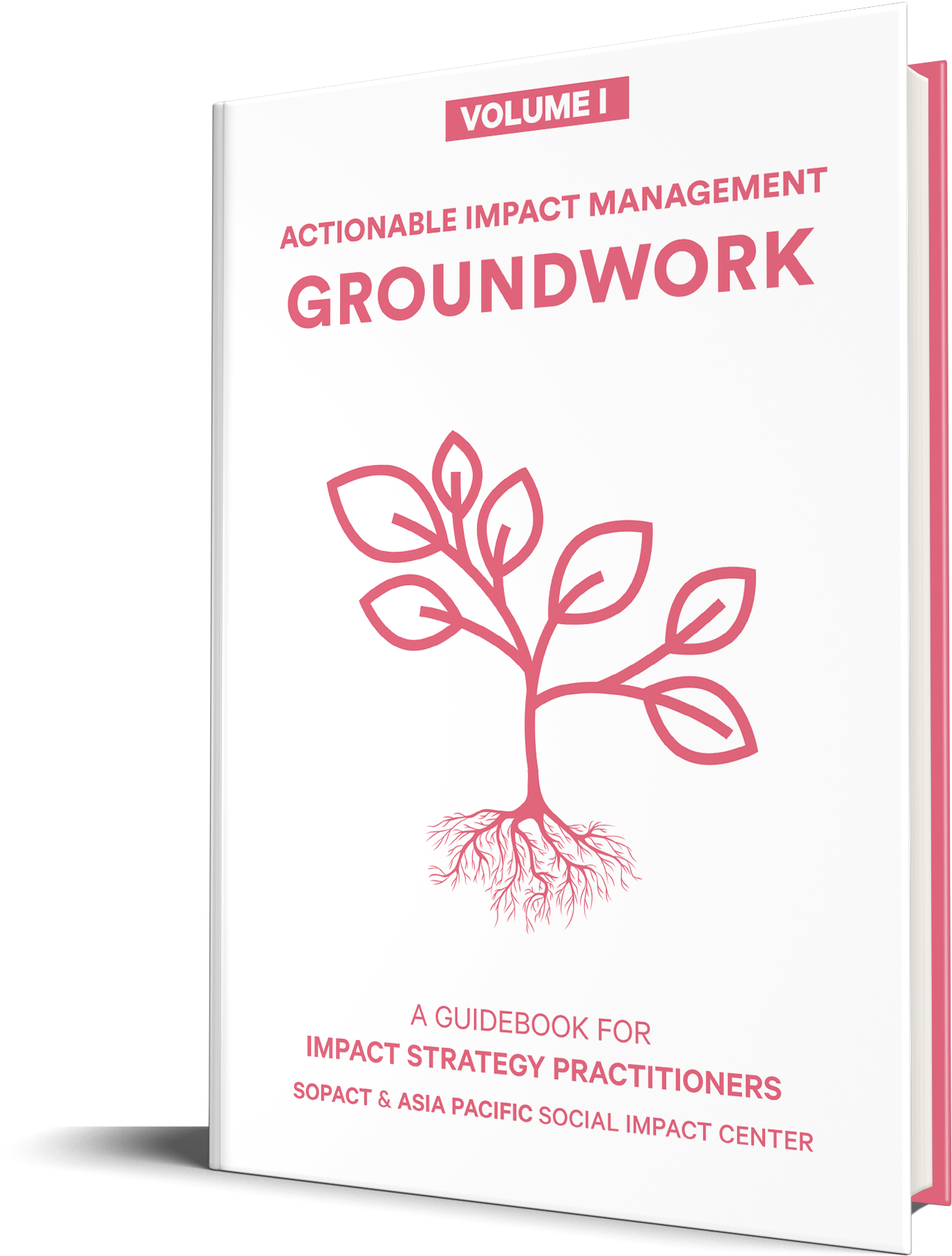 Actionable Impact Strategy